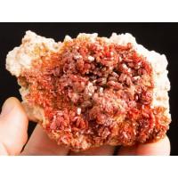 Kırmızı Vanadinit Kristal Örneği ile Beyaz Barit
